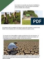 Ecologia Tierra