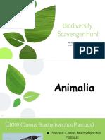 Biodiversity Hunt