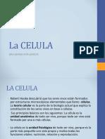 celula y membrana celular.pptx