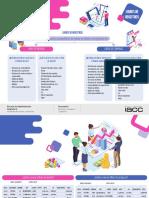 IVS S4.pdf