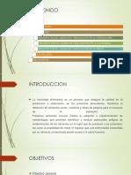 sector pesquero YAA.pptx