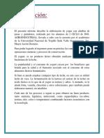 Informe Del Yogur