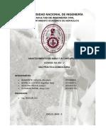 PC2-DOMICILIARIA.2.docx