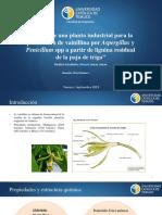 Avance 2 Metabolicos, LIENAN.pptx