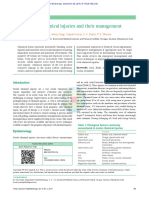 Ocular_chemical_injuries_and_their_management.pdf