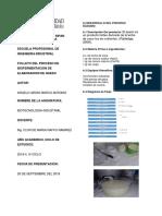 proceso_fermentacion_lactica_Angelo_Aroni_bi.docx