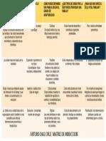 matriz de induccion.pdf