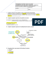 EXAMEN A  respuestas (1).docx