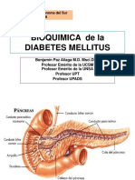 Bioquimica de La Diabetes Mellitus -2019 Upads