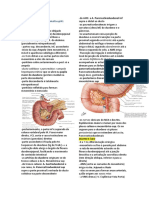 Abdome IV.docx