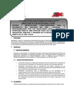 FC-DIRECTIVA N°018-2019-UGEL-J _3_-convertido