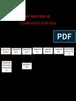 Flujograma Del Proceso Ejecutivo Laboral Anexo Numeral Treinta y Uno