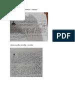 evidencias microbiologia.docx