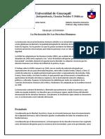 declaracion de los DDHH.docx