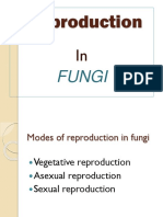 reproduction in fungi.pptx
