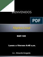 PRESENTACIÓN DEL CURSO Álgebra lineal.pptx