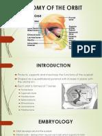 ANATOMY OF THE ORBIT (1).pptx