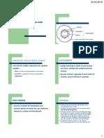 1-DEFINITII.pdf