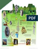 ciclo del procesamiento de oro.pdf