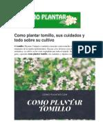 Como plantar tomillo, sus cuidados y todo sobre su cultivo.pdf