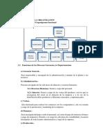 ESTUDIO DE LA ORGANIZACION.docx