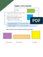 Tema 13. Áreas y perímetros SOL.pdf