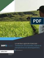 Le Secteur Agricole Marocain