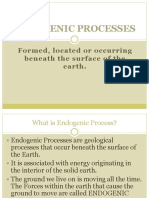 ENDOGENOUS-process.pptx