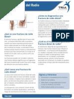 Thds2008 Book Distal-radius-fracture 2016 06 Spanish