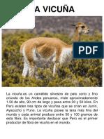 Animales Nativos del Perú