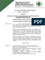 SK no 17 ttg pelaksanaan monitoring kegiatan.docx