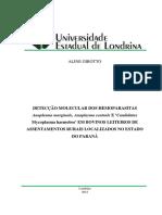 Girotto, 2012.pdf