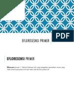 Efloresesnsi primer.pptx