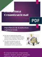6_Estructura Organizacional.pptx