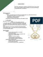 CRANIAL NERVES.docx