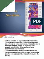 FASES SENSIBLES.pdf