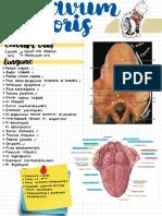 Anatomy 4.pdf