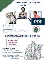EM-II-Székely-A-thorax-1