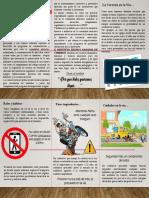 Folleto PESV 2019