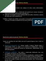 3. Prácticas culturales.ppt