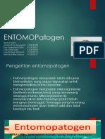ENTOMOPatogen PPT