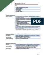 87879232-Identificacion-del-puesto (1).docx