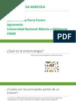 Entomologia Laura Parra