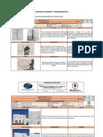 FICHAS DE LESIONES Y PREDIAGNOSTICO.docx