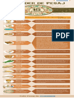 Aish_The-Passover-Seders15-Steps-SP.pdf