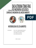 MICROBIOLOGIA DE LOS ALIMENTOS.docx