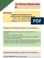 2. Formas de reproduccion.2019.2.pptx
