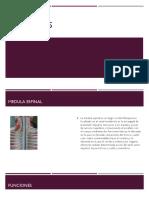 Cavidades-kerly.pdf