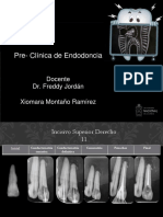 endodoncia radiografias (1).pptx