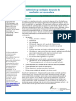 Burn_Psychological_Distress_Sp.pdf
